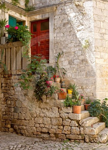 Staircase with flowerpots.