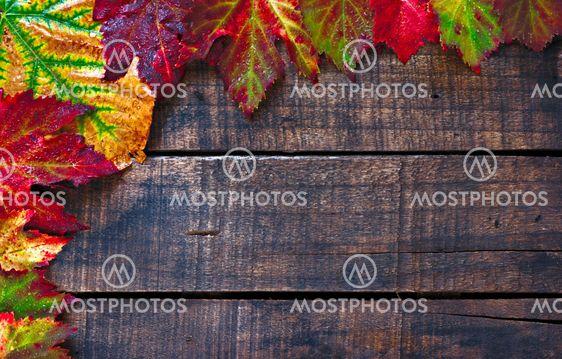 Farverige våd efteråret efterlader arrangeret på gamle træ tabel