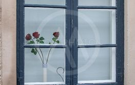 Picturesque old fashioned window with red roses
