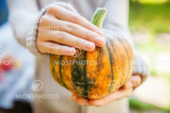 Closeup natural autumn fall view woman hands holding...