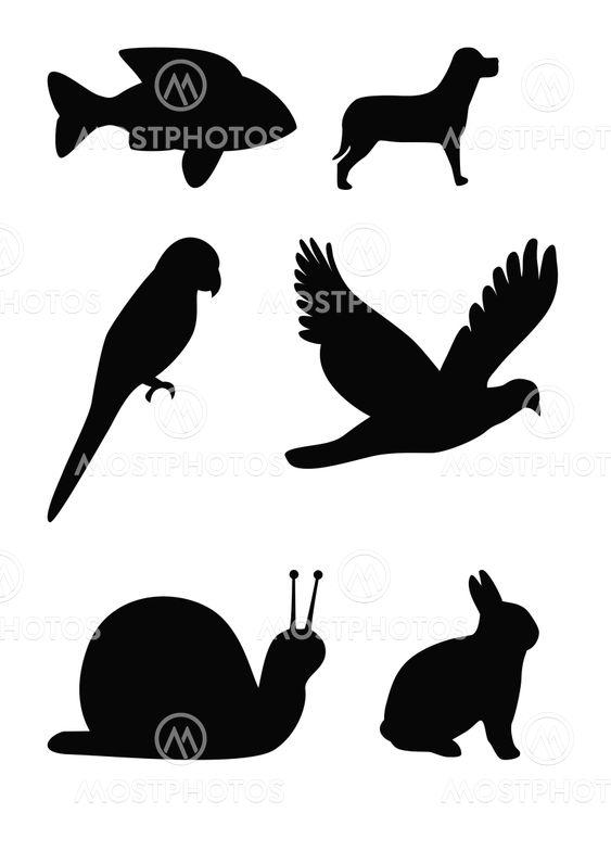 Eläinten silhouettes