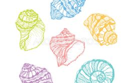 Vector colorful seashell set. Hand drawn illustration of...