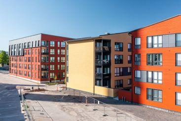Modern wooden residential buildings in summer....