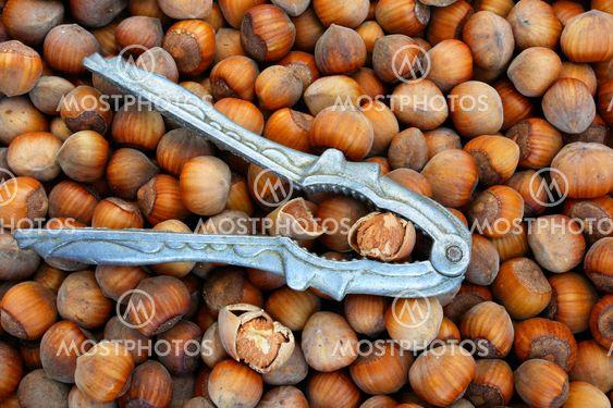 Nötknäpparen med hasselnötter