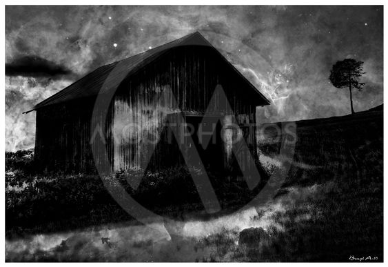The barn on the Meadow