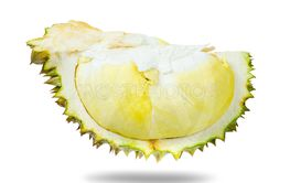 durian fruit isolated on white.