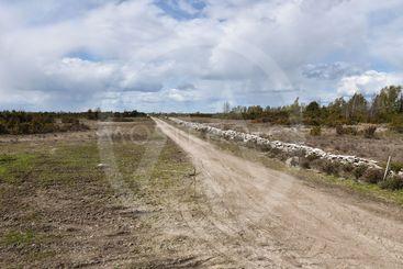 Väg i världsarvet Södra Ölands Odlingslandskap
