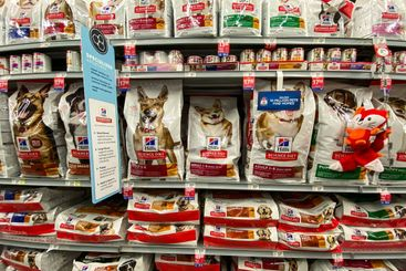 A display of Hills Science Diet Dog Food at a Petsmart...
