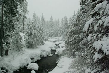 Mountain Stream In A Winter Storm