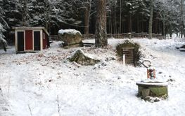 Nostalgi i vintermiljö  (sweden)