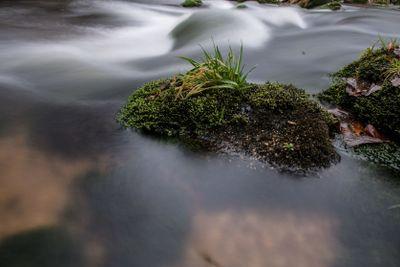 Rapids on Jizera