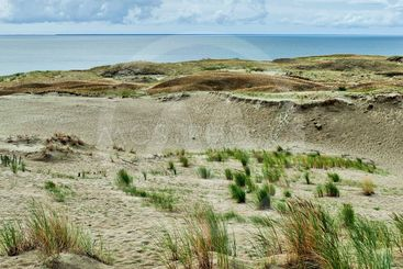 In the Dunes of Curonian Spit 07