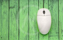 Computer mouse on green wooden background
