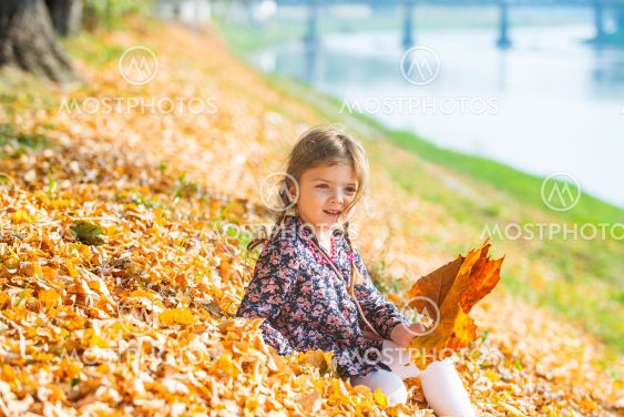 Toddler cute girl playing with autumn leaves. Falling...