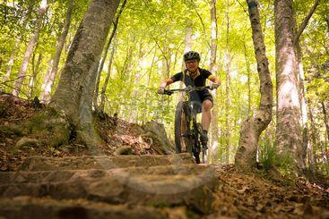 kvinna cyklar nerför trappa i skogen