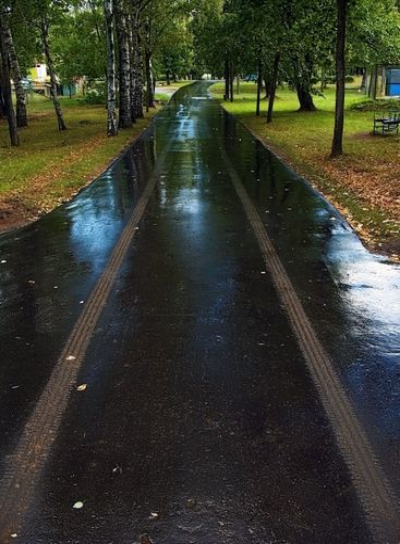 wet traces