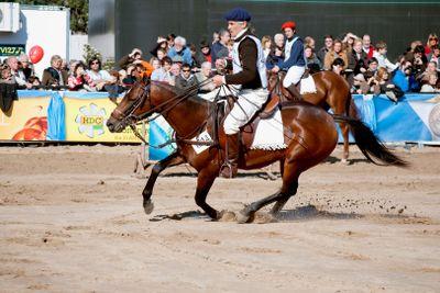 Argentina - 124º Exposicion Rural Argentina