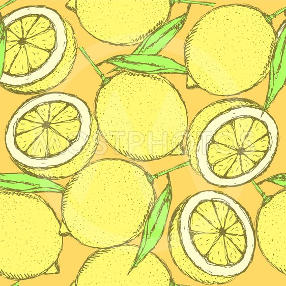Sketch juicy lemon in vintage style