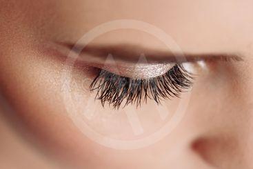 Long Black Eyelashes. Closeup Of Beautiful Woman Eyebrow...