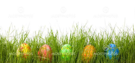 Easter eggs in fresh green grass