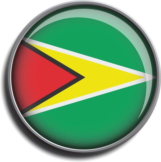 flag icon web button guyana