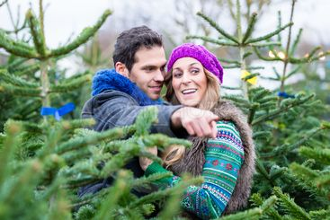 Couple looking to buy Christmas trees
