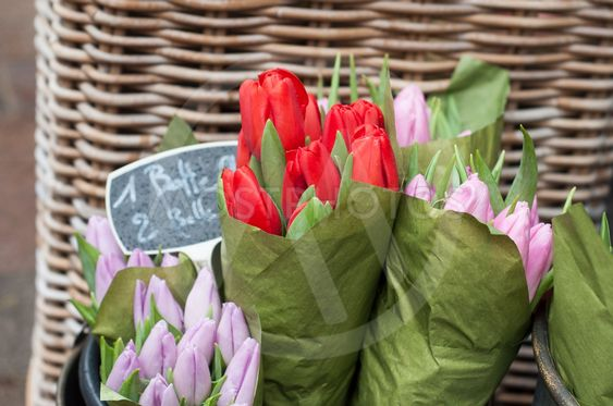 colorful tulips bouquets at the florist