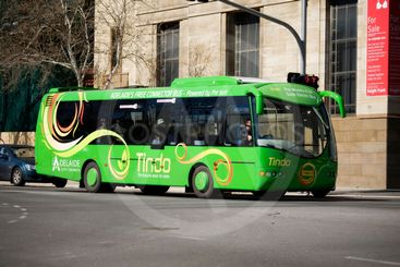 Tindo Solar Bus