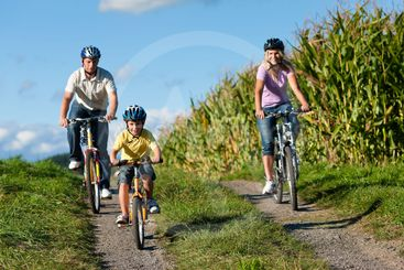 Family is cycling in summer
