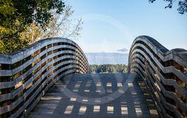 Gångbro till naturen