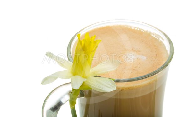 Coffee Late with Flower, mint, star-anise and cinnamon