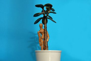 Wooden figure standing in plant pot leaning on succulent...