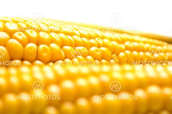 Corn tausta