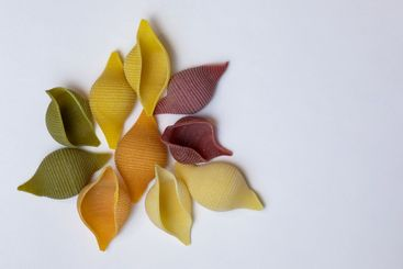Shell noodles in 5 colors and flavors
