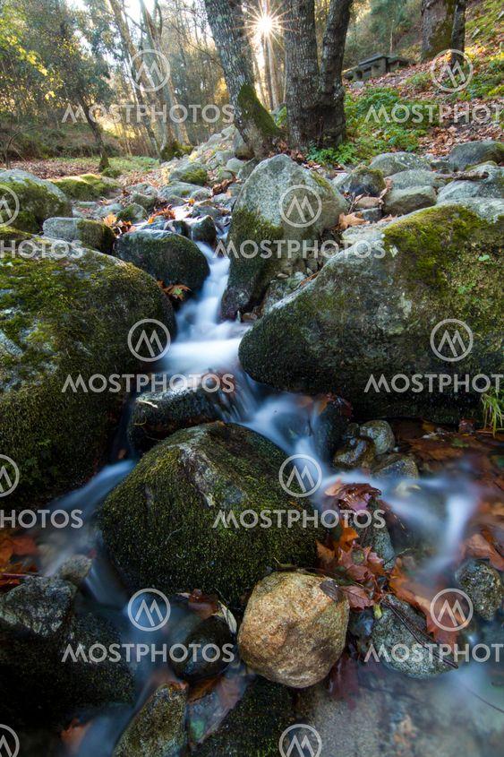 fresh flowing creek