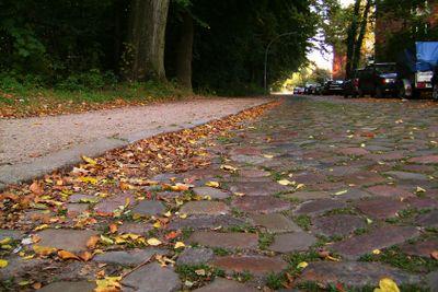 Stone roadway, yellow leaves.