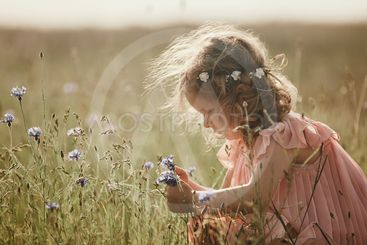 girl in a field collects a bouquet of flowers. little...