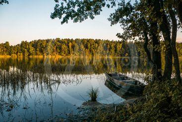wooden boat on pond