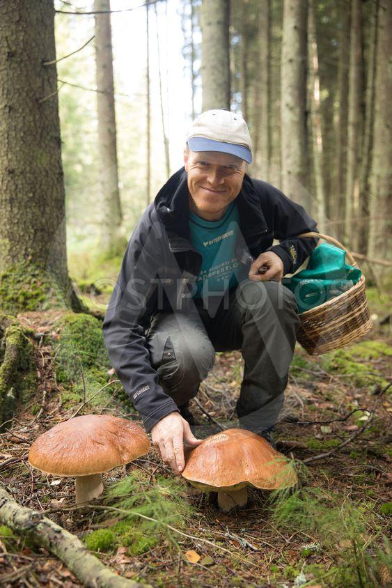 man hittar stora svampar