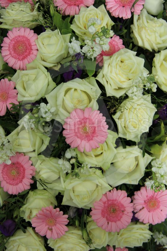 pink gerberas and white roses - wedding flowers
