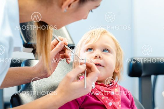 Dentist explaining treatment to a child using a plush toy