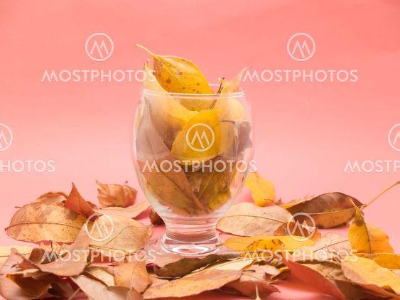 glas med torra löv