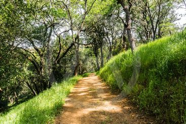 Hiking path on the hills of the newly opened Rancho San...