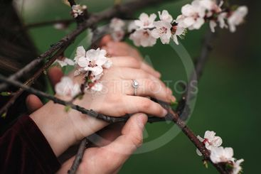 hands of a young couple with a ring. love, couple,...