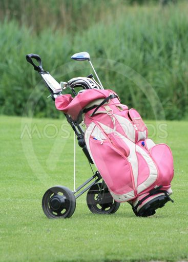 pink golfbag with golfclubs