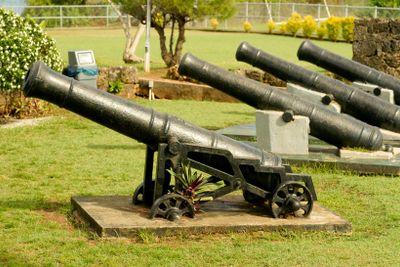 Fort Bennett Cannons