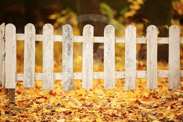 White wooden fence in autumn park. Background with...