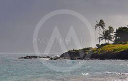 Windy Hawaiin beach