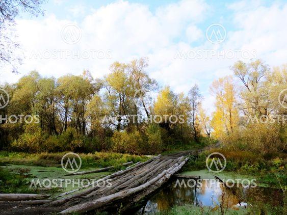 Старый  мостик  через  речку.