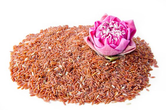 """""""Raw brown rice and lotus fl..."""" by Miss.PENCHAN PUMILA"""